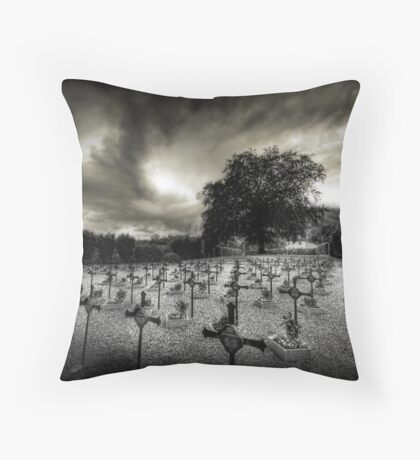 I will protect you Throw Pillow