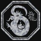 Chinese New Year of The Dragon by ChineseZodiac