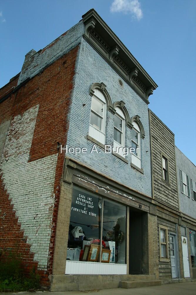 the resale shop by Hope A. Burger