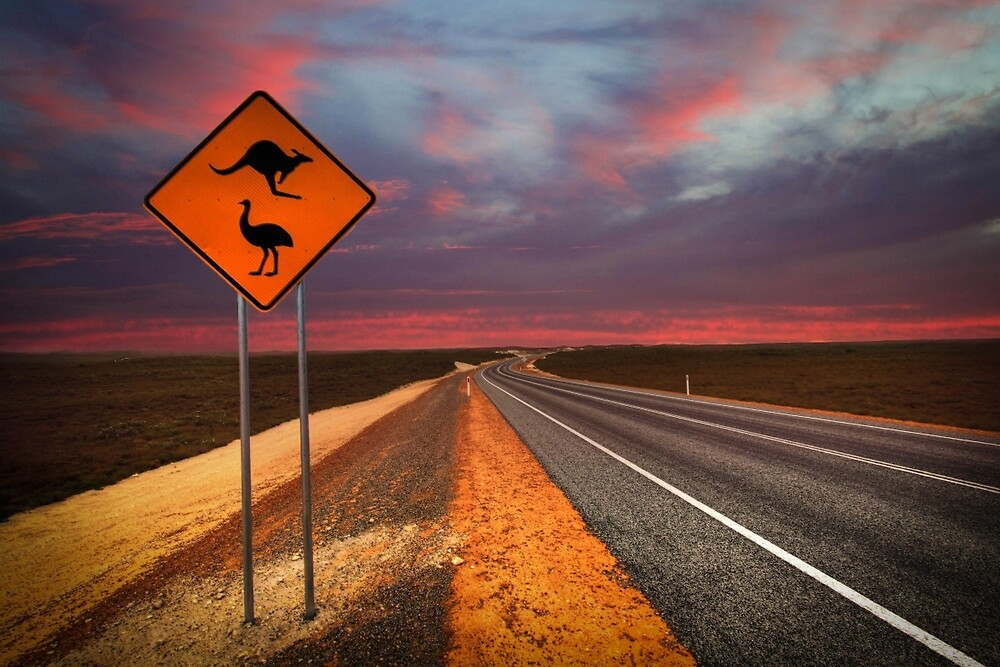 Coat of arms drive, outback Western Australia  by Marc Russo