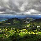 Pali Vista, Oahu, Hawaii by Gyuri Nagy