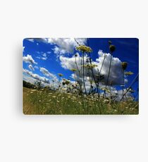 Low down landscape Canvas Print