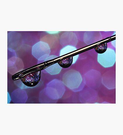 Purple Needle Sparkle Photographic Print