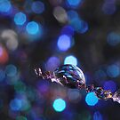 Disco Ball by Amy Dee