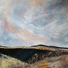 Rannoch Moor, Perthshire by christine vandenhaute