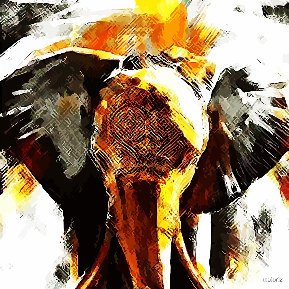 Elephant ART by maioriz