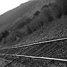 Railroad Tracks Down The Line Black and White by Bo Insogna