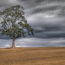 Standing Alone by geoff curtis