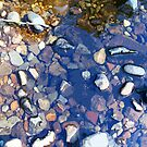 Pebbles Puddle by linmarie
