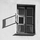 BLACK AND WHITE 5 by Stanislav Podusenko
