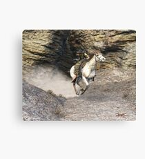 The Fleeing Bandit Canvas Print