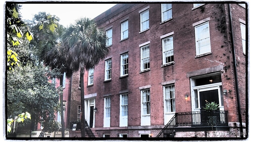 Windows on Savannah by Cyn Piromalli