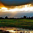 Sun breaks Through, Alberta by Jessica Chirino Karran