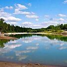 Horburg River Campground, Alberta by Jessica Chirino Karran