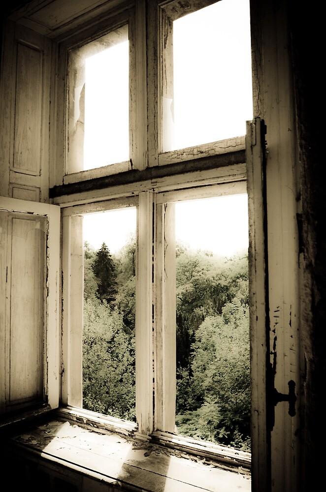 Soft ~ Chateau Noisy by Josephine Pugh