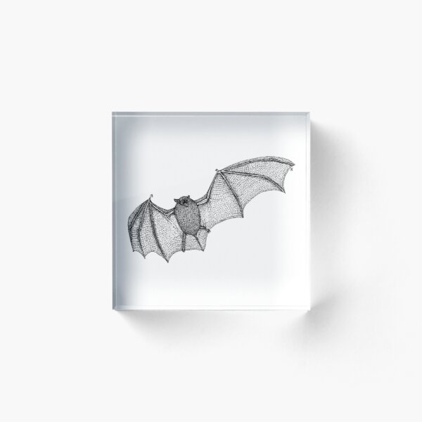 Dotwork Pipistrelle Acrylic Block