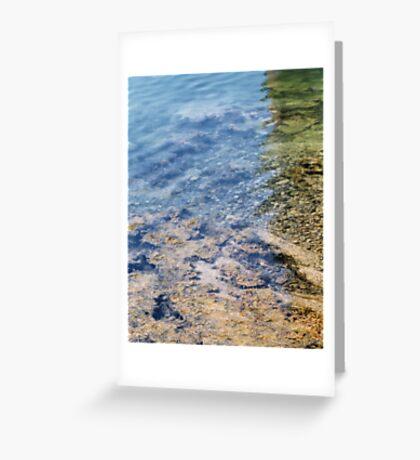 Penobscsot Bay Greeting Card