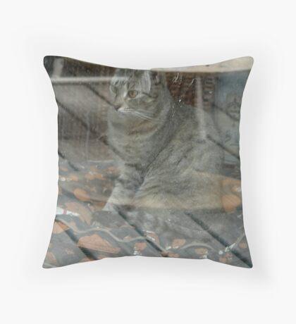 Transporter Throw Pillow