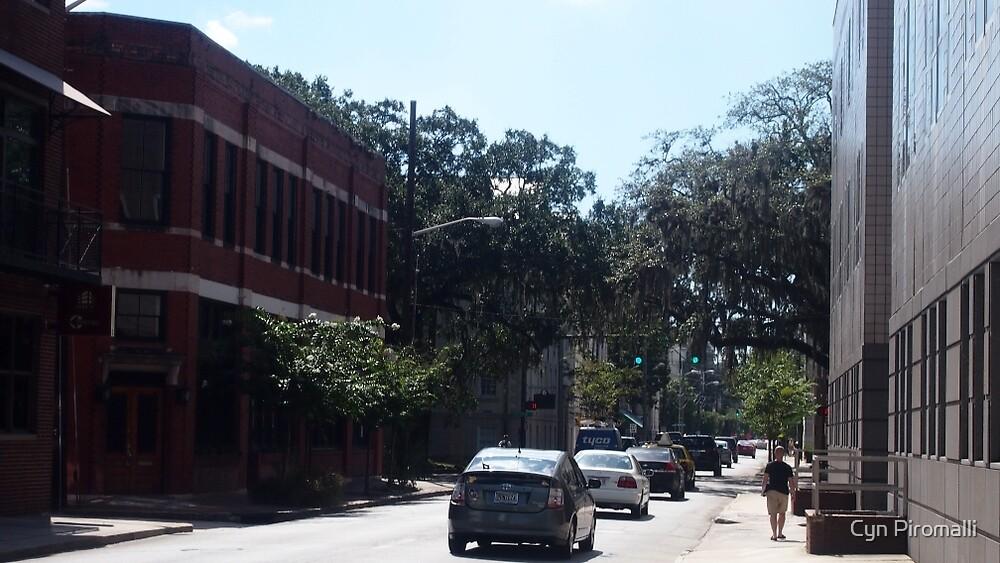 Everyday Savannah Street by Cyn Piromalli