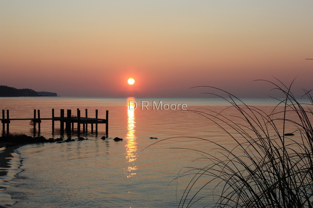 Sunrise Oriental, NC by D R Moore