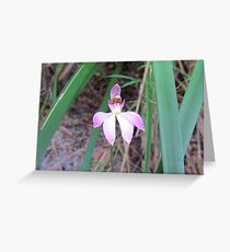 ~ Lady Finger Orchid ~ Greeting Card