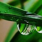 two water drops by amar singh