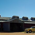 AUSTIN AT BERIDA WOOLSHED by Helen Akerstrom Photography