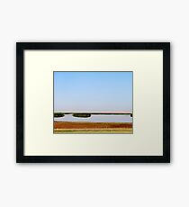The Lake Bushes Framed Print