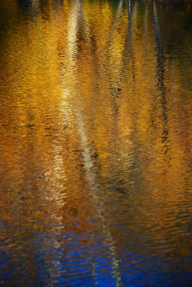VT Reflection  by MIKEF