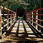 Bridge  by noli0408