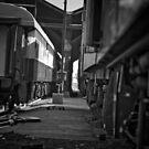 Passagers of Rails by David  Preston