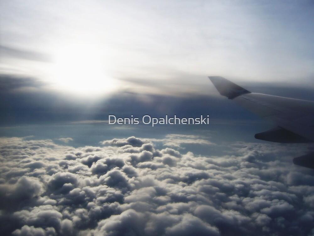 The flight home by Denis Opalchenski