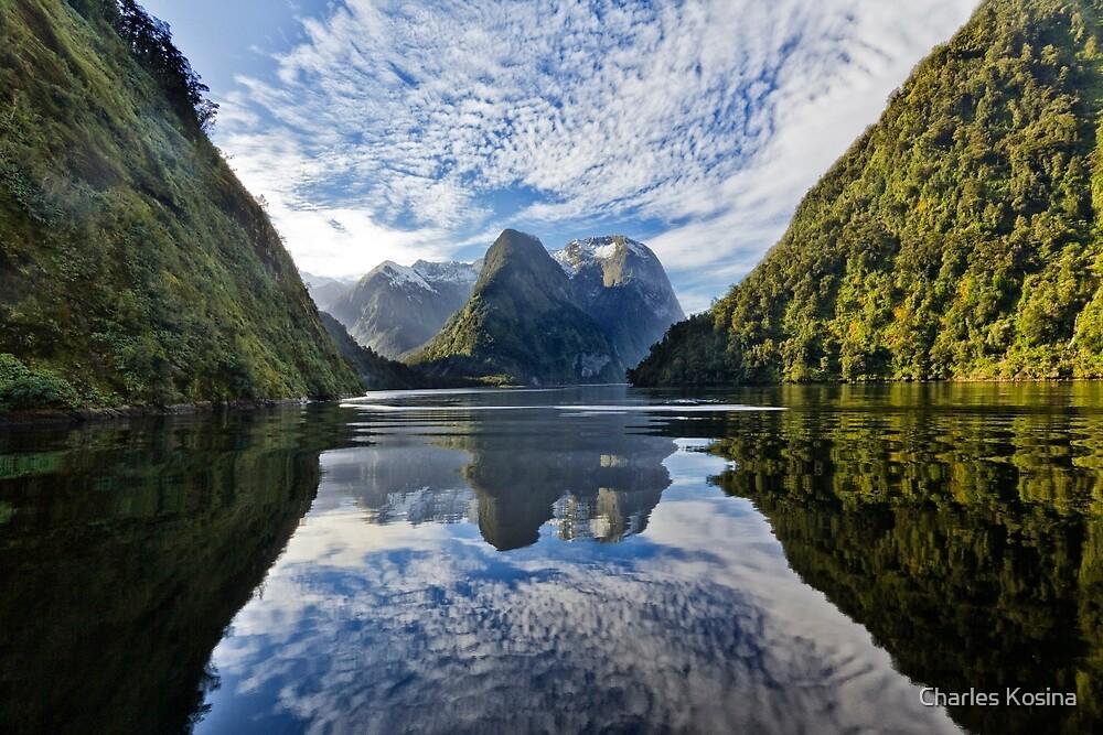 Doubtful Sound 4 by Charles Kosina