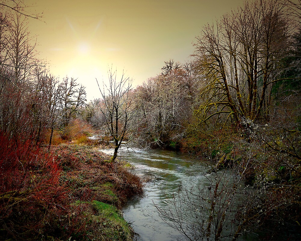 Little Fall Creek Winters Glow by Charles & Patricia   Harkins ~ Picture Oregon