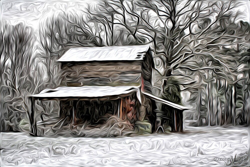 Winter in the Country by suzannem73