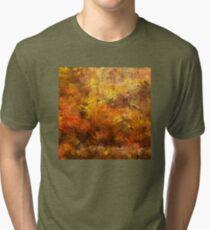 Autumn Leaves 09 Tri-blend T-Shirt