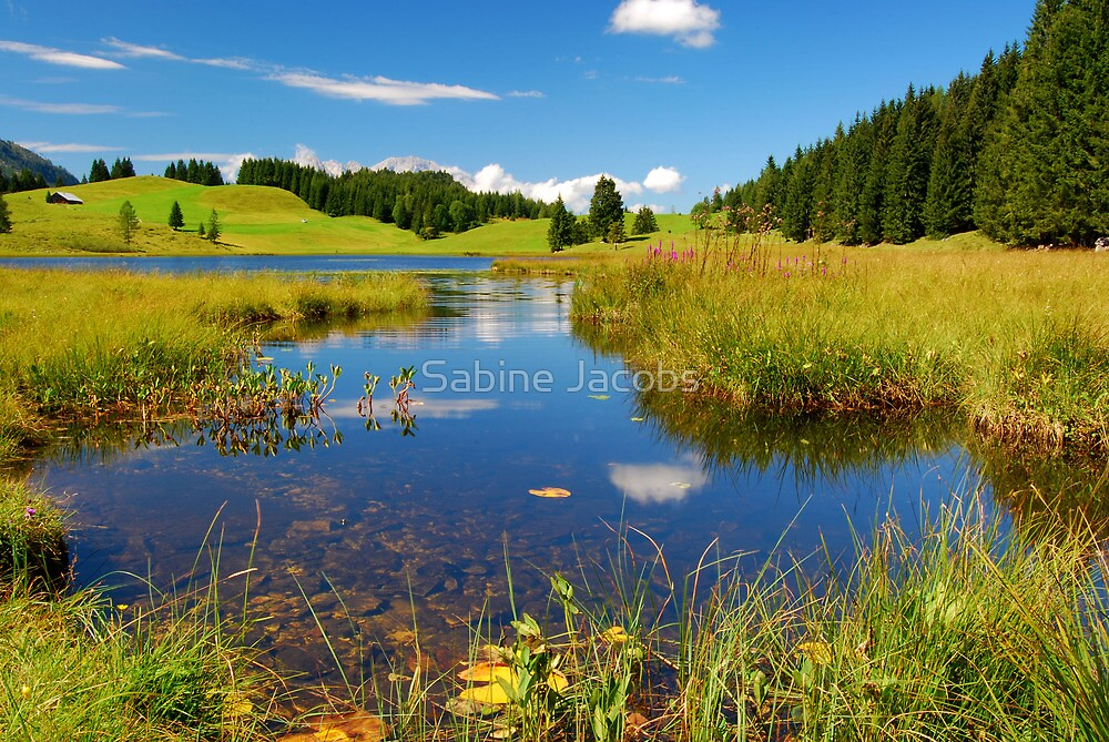 Summer in the Austrian Alps by Sabine Jacobs