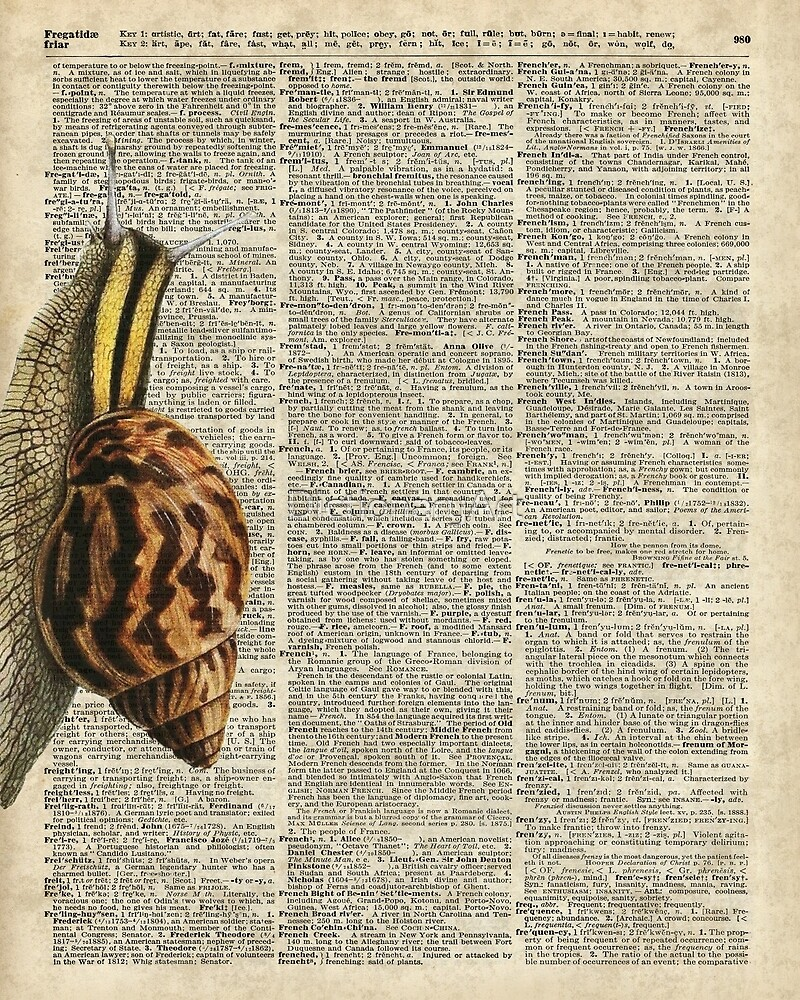 Snail worm on Dictionary page by DictionaryArt