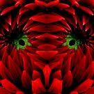 SEEING RED~ by RoseMarie747