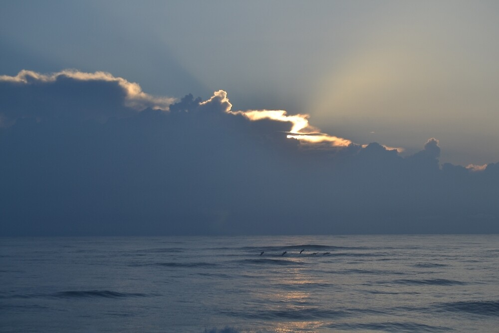 Vero Beach, Florida Sunrise by BuffaloBob