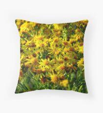 Wild Sunshine (Common Ragwort, Senecioneae Jacobaea) Throw Pillow