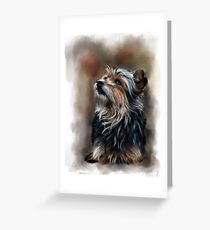 Shaggy pet dog portrait Greeting Card