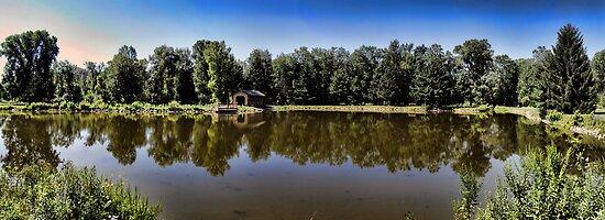 Scenic Reflections by EbelArt