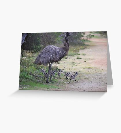 Dad taking the chicks for a walk Greeting Card