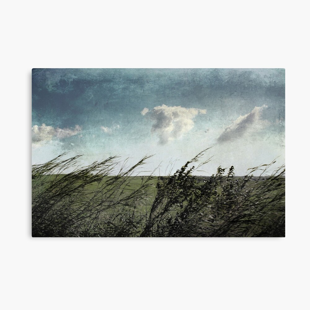 If the winds of winter could soothe my soul Canvas Print