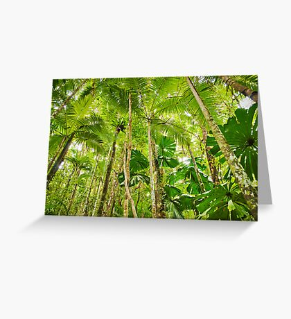 Palm Forest, Girringun National Park Greeting Card