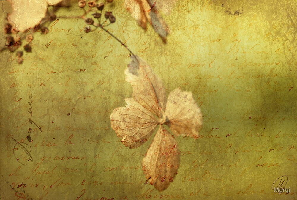 End of Season by Margi