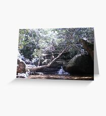 Irrawong Reserve, Narrabeen, Sydney Greeting Card