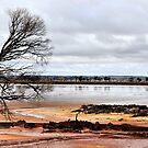 Salt Lake - Western Australia by Bev Woodman