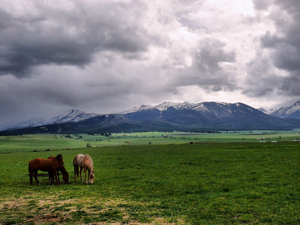 We Stick Together by Charles & Patricia   Harkins ~ Picture Oregon